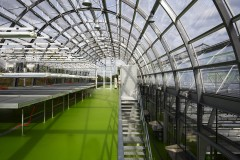 Research green house University, Riedberg - StoPox KU 601